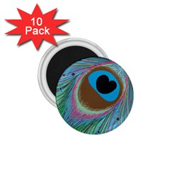 Peacock Feather Lines Background 1.75  Magnets (10 pack)