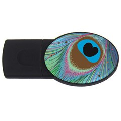 Peacock Feather Lines Background USB Flash Drive Oval (1 GB)