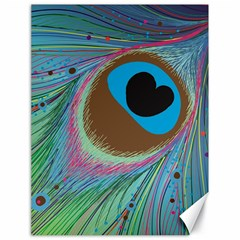 Peacock Feather Lines Background Canvas 18  x 24