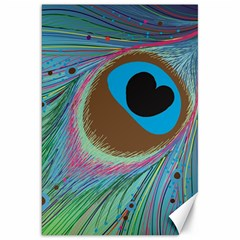 Peacock Feather Lines Background Canvas 20  x 30