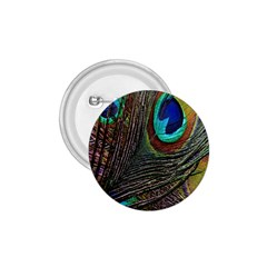 Peacock Feathers 1.75  Buttons
