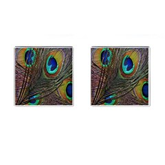 Peacock Feathers Cufflinks (Square)