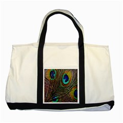 Peacock Feathers Two Tone Tote Bag