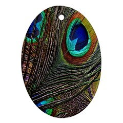 Peacock Feathers Oval Ornament (Two Sides)