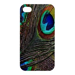 Peacock Feathers Apple iPhone 4/4S Hardshell Case