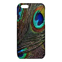 Peacock Feathers iPhone 6/6S TPU Case