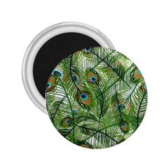 Peacock Feathers Pattern 2.25  Magnets