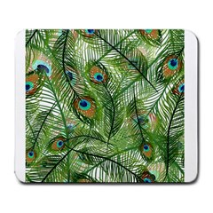 Peacock Feathers Pattern Large Mousepads