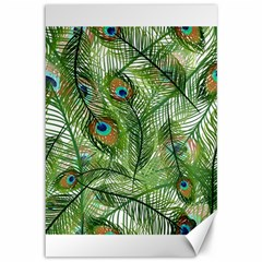 Peacock Feathers Pattern Canvas 12  X 18