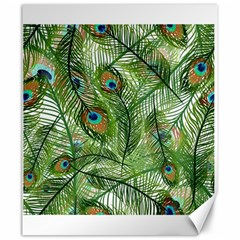 Peacock Feathers Pattern Canvas 20  X 24