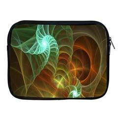 Art Shell Spirals Texture Apple iPad 2/3/4 Zipper Cases