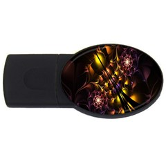 Art Design Image Oily Spirals Texture USB Flash Drive Oval (2 GB)