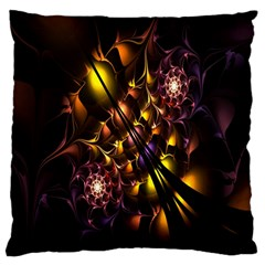 Art Design Image Oily Spirals Texture Large Cushion Case (Two Sides)