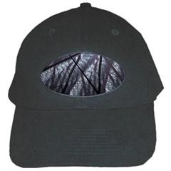 Fractal Art Picture Definition  Fractured Fractal Texture Black Cap