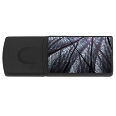 Fractal Art Picture Definition  Fractured Fractal Texture USB Flash Drive Rectangular (4 GB)