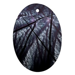 Fractal Art Picture Definition  Fractured Fractal Texture Oval Ornament (Two Sides)