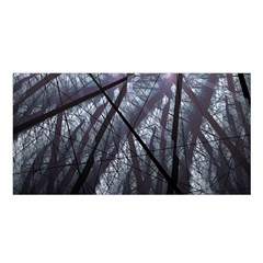 Fractal Art Picture Definition  Fractured Fractal Texture Satin Shawl