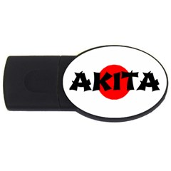 Akita Name On Flag USB Flash Drive Oval (2 GB)