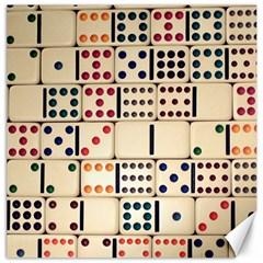 Old Domino Stones Canvas 12  x 12