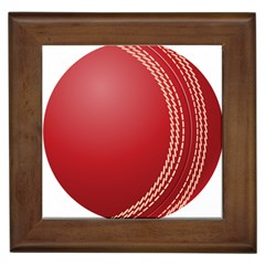 Cricket Ball Framed Tiles