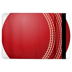 Cricket Ball iPad Air 2 Flip