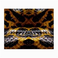Textures Snake Skin Patterns Small Glasses Cloth