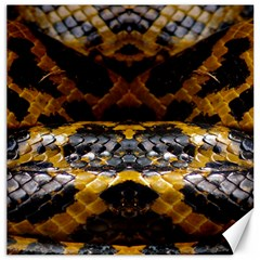 Textures Snake Skin Patterns Canvas 16  x 16
