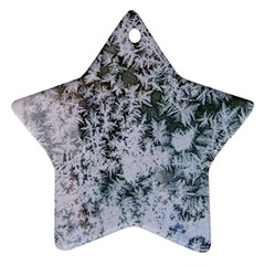 Frosted Winter Texture Ornament (Star)