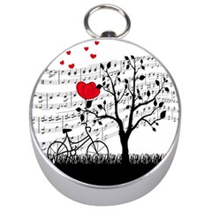 Love song Silver Compasses