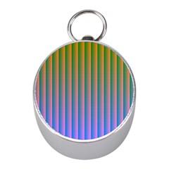 Hald Identity Mini Silver Compasses