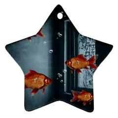 Natural habitat Ornament (Star)