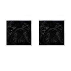 Black bulldog Cufflinks (Square)