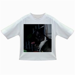 Akita second Infant/Toddler T-Shirts