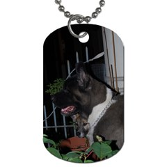Akita second Dog Tag (Two Sides)