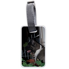 Akita second Luggage Tags (One Side)