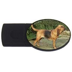 Bloodhound Black And Tan Full USB Flash Drive Oval (2 GB)