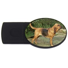 Bloodhound Black And Tan Full USB Flash Drive Oval (1 GB)