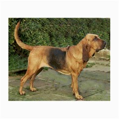Bloodhound Black And Tan Full Small Glasses Cloth