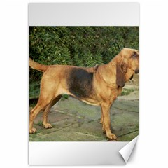 Bloodhound Black And Tan Full Canvas 12  x 18