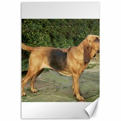 Bloodhound Black And Tan Full Canvas 24  x 36