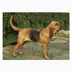 Bloodhound Black And Tan Full Large Glasses Cloth