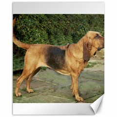 Bloodhound Black And Tan Full Canvas 11  x 14