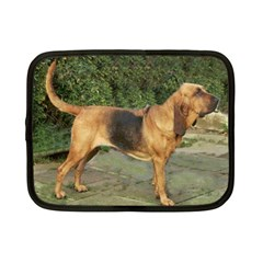 Bloodhound Black And Tan Full Netbook Case (Small)