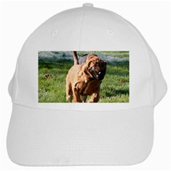 Bloodhound Running White Cap