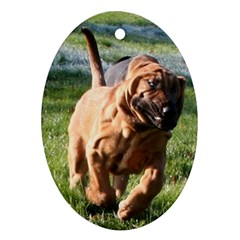 Bloodhound Running Ornament (Oval)
