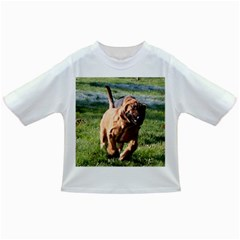 Bloodhound Running Infant/Toddler T-Shirts