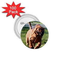 Bloodhound Running 1.75  Buttons (100 pack)