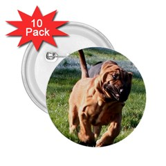 Bloodhound Running 2.25  Buttons (10 pack)