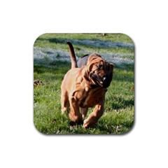 Bloodhound Running Rubber Coaster (Square)