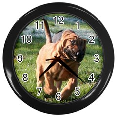 Bloodhound Running Wall Clocks (Black)